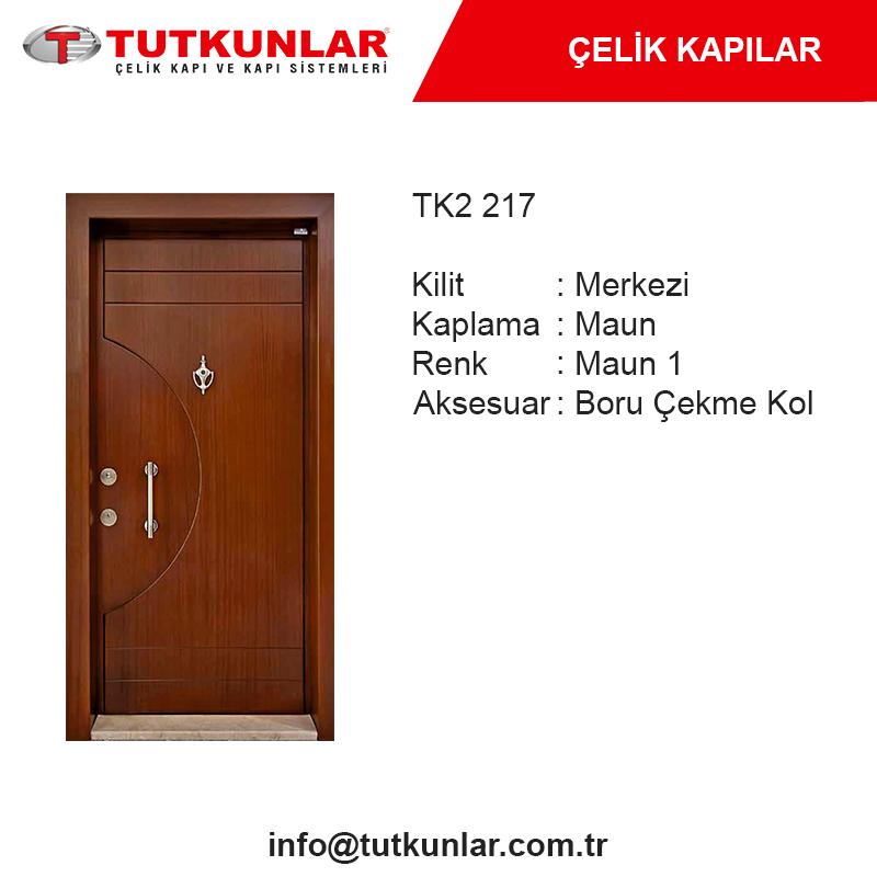 Çelik Kapı TK2 217
