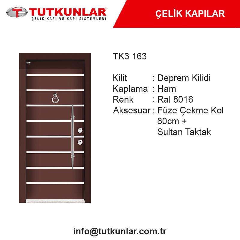 Çelik Kapı TK3 163